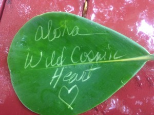 Cosmic Heart Leaf
